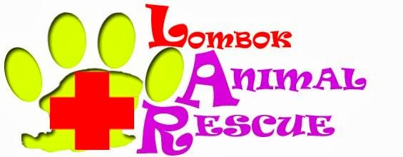 Lombok Animal Rescue